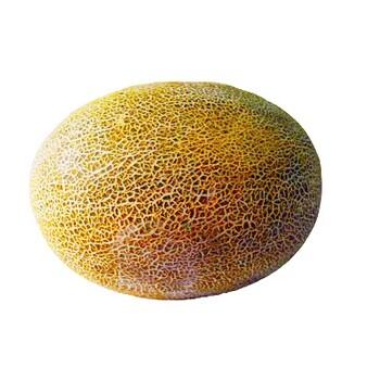 Дыня, 1 шт  (~3-4 кг)