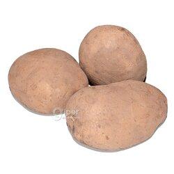 """Картошка """"Ter Önüm"""", 1 кг"""